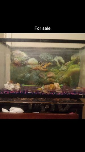 Fishtake30gal. and more comes with it.. for Sale in Jackson, MS
