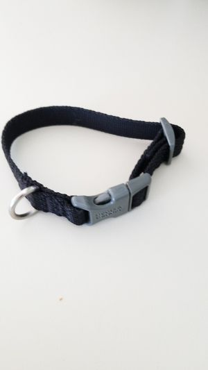 Boots & Barkley size small dog collar for Sale in Weymouth, MA