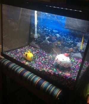Fish tank for Sale in Richmond, VA