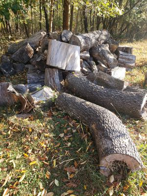 Firewood, you must take all for Sale in Danville, PA