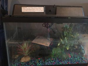 Fish Aquarium with toys for Sale in Murfreesboro, TN