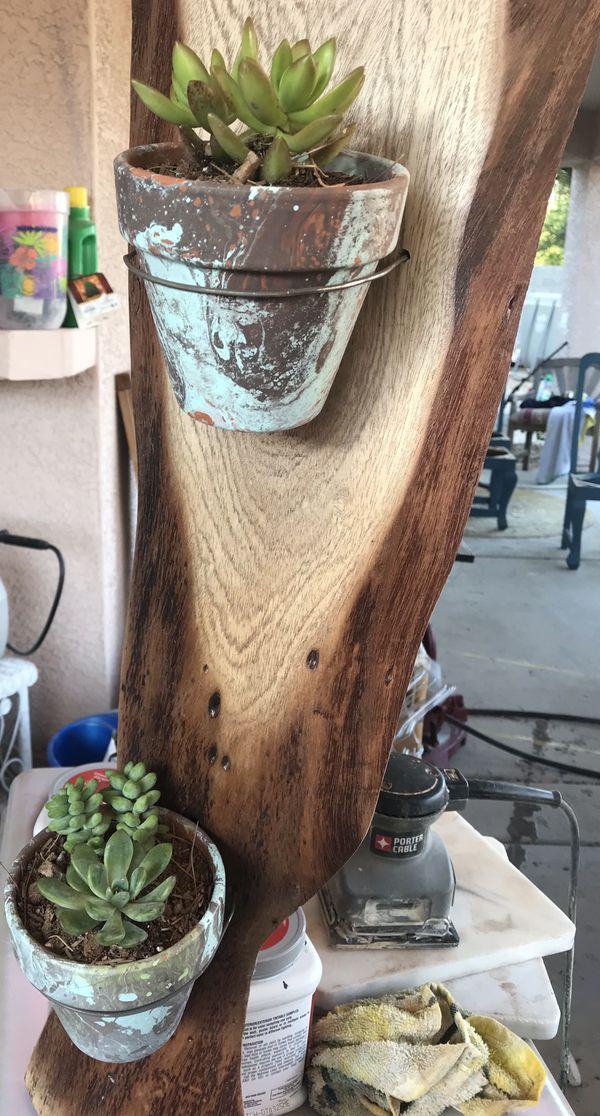 Handmade live edge mesquite slab succulent planter display