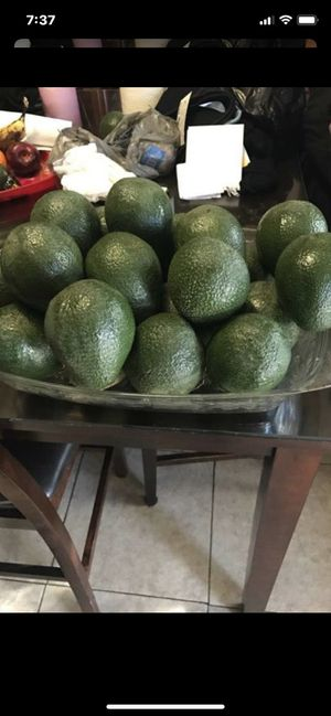 AVOCADOS/AGUACATES $1ea. or 12-$10 for Sale in Downey, CA