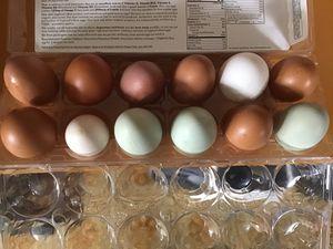 Farm fresh, free range chicken eggs for Sale in Edgewood, WA