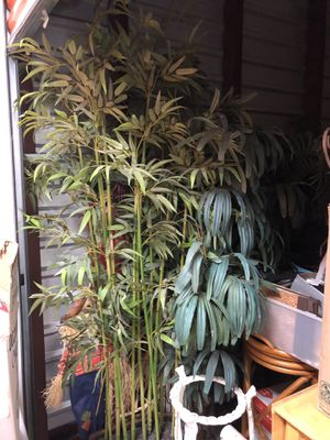 Assorted Six foot plus Silk Plants for Sale in Bradbury, CA