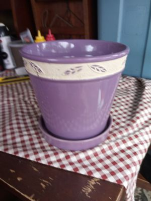 Potting plant for Sale in Lorain, OH
