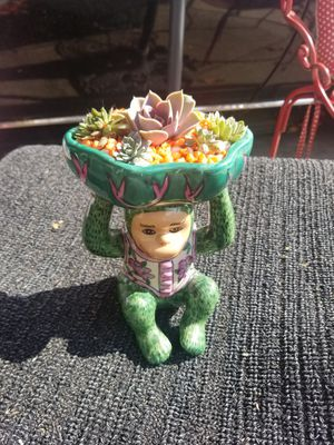 Succulent monkey for Sale in City of Industry, CA