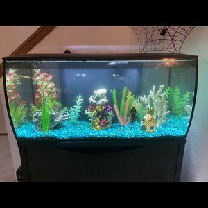 Fish Tanks for Sale in Oak Harbor, WA