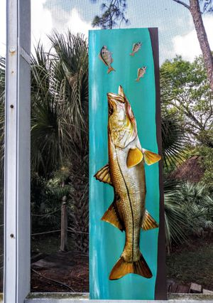 Snook on for Sale in Port St. Lucie, FL