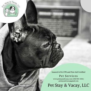 Pet Stay & Vacay, LLC for Sale in Alexandria, VA