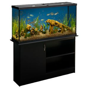 Marineland 60gal tank w/stand, filter, and glass lid. for Sale in Chapel Hill, NC
