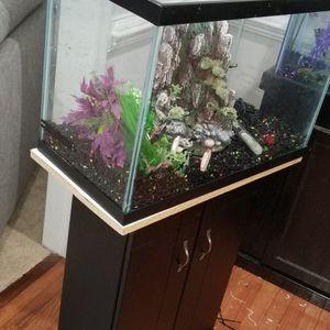 20 Gallon Fish Tank for Sale in Woodbridge, VA