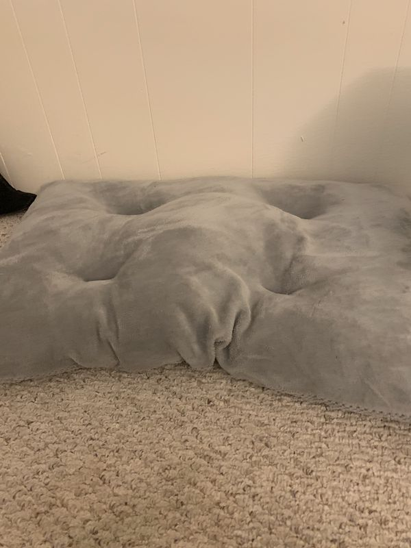 Dog bed & others