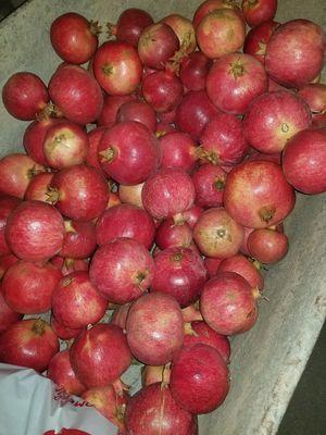 Organic Pomegranates for Sale in Riverside, CA