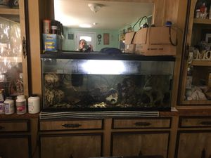 Fish tank for Sale in Watsonville, CA