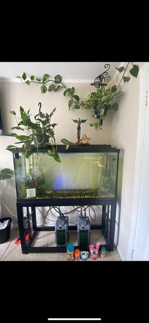 160 gallon aquarium for Sale in San Francisco, CA