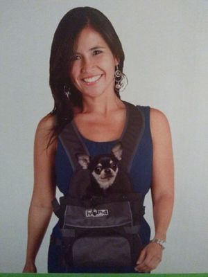Outward Hound Poochpouch Front Carrier for Sale in Norfolk, VA