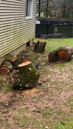 Free wood for Sale in Newington, CT