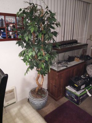Artificial Decorative Tree for Sale in Portland, OR