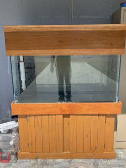 90 Gallon Salt Water Fish Tank for Sale in St. Petersburg,  FL