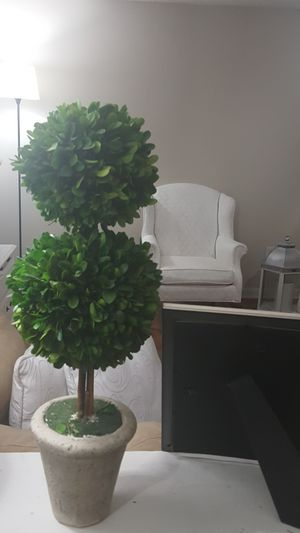 Boxwood topiary a great piece of home decor for Sale in Duluth, GA