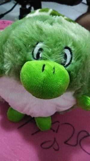 Stuffed animal turtle for Sale in Winter Haven, FL