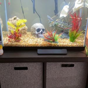 20g High Fish Tank for Sale in Cleveland, OH