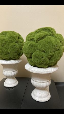 Two Mossy Topiary Trees for Sale in Hinsdale,  IL