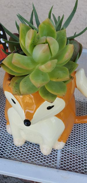 So cute fox planter packed with succullents for Sale in Orange, CA