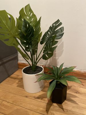 Set of decorative plants for Sale in Brooklyn, NY