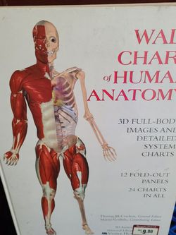 Book Wall Chart Of Human Anatomy for Sale in South Gate,  CA
