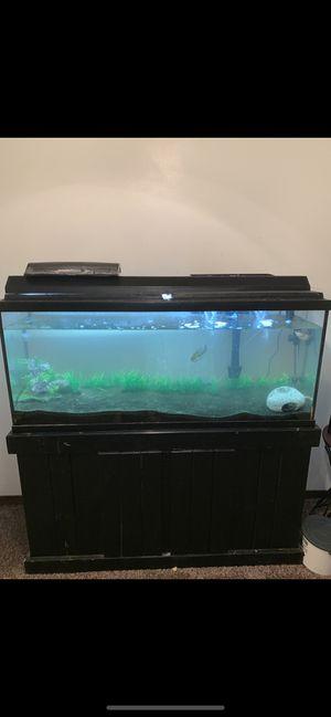 55 gallon fish tank for Sale in Wichita, KS