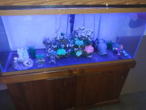 Fish tank for Sale in Norman, OK