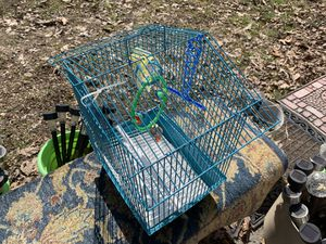 Blue bird cage , used only a month for Sale in Grottoes, VA