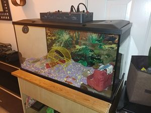 40 gallon Critter Box need gone asap for Sale in Davie, FL