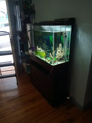 55 Gallon Fish tank with stand and heater filter and oxygen pump included. for Sale in New York, NY