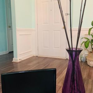 All 3 .TV With It's Control, Purple Glass Bamboo Decoration Vase, And Indoor/outdoor Patio Lamp for Sale in Duluth, GA