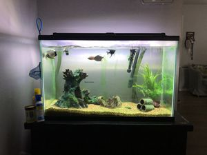 Fish tank for Sale in Banning, CA