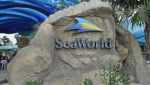 SeaWorld Tix for Sale in San Diego, CA