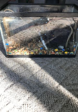 Fish Tank- Includes everything but the cover with light I thinks it's a 20 gallon tank. With cabinet stand and extra filters. $50. for Sale in Austin, TX
