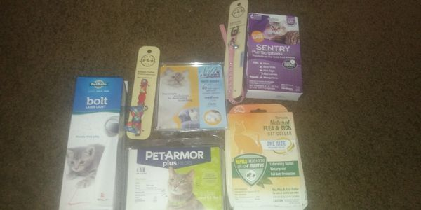 Cat supplies 🐱