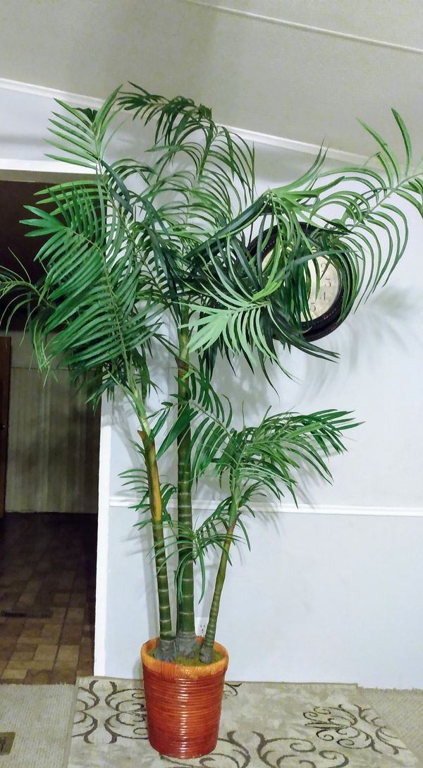8 FT. TALL INDOOR/ OUTDOOR ARTIFICIAL PALM TREE