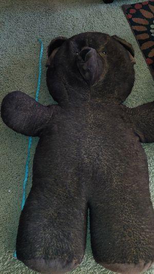 Bear for Sale in Hemet, CA