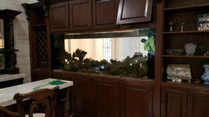 300 gallon fish tank aquarium pecsera for Sale in Hialeah, FL