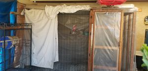 Large Parrot Cage for Sale in Nipomo, CA