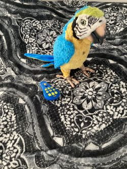 Furreal friends squawkers mccaw for Sale in Alameda,  CA