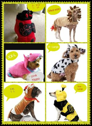 Dog Halloween costumes for Sale in Midland, TX