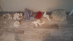Sea corals for Sale in Canton, GA