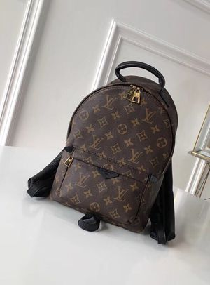 Louis Vuitton Palm Springs Pm for Sale in East Liberty, PA