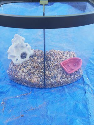 Small fish tank make offer for Sale in Phoenix, AZ